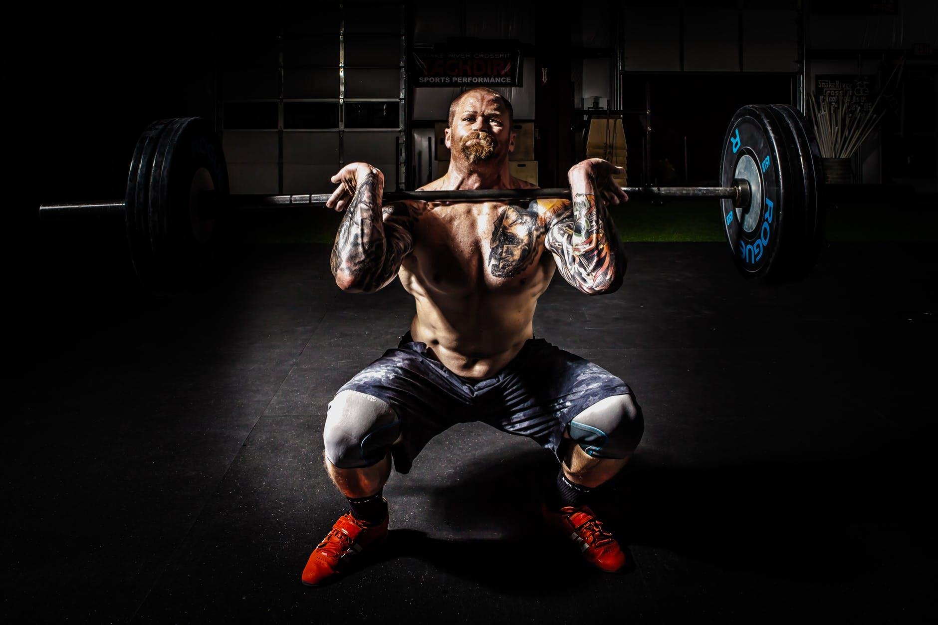 Conseils musculation pour débutants + Exemple programme Push Pull Legs (PPL)